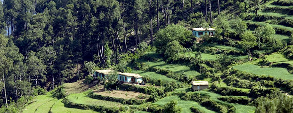 Patnitop India  city pictures gallery : Budget Patnitop Hotels, Budget Hotels in Patnitop, Budget Patnitop ...