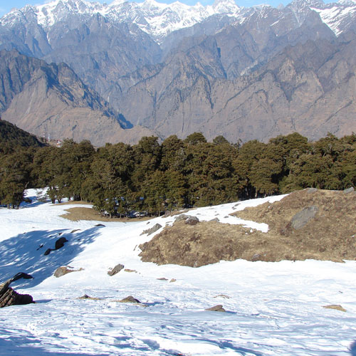 Auli - What to See