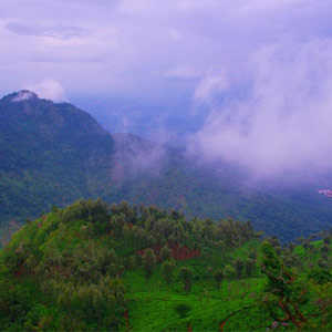 Coonoor - What to See